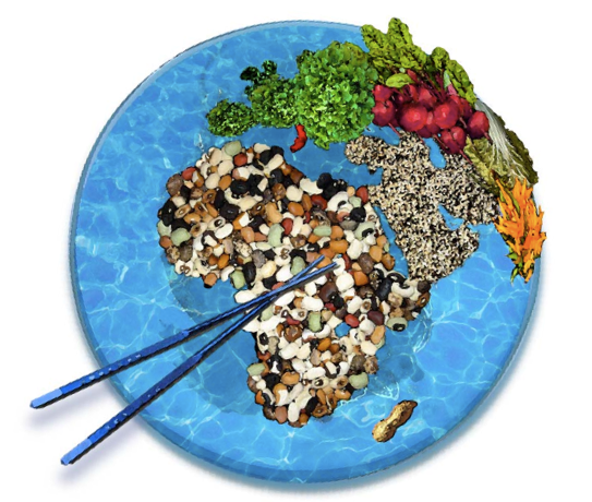 Dietary Guidelines Around the World | The Dietitian's Pantry